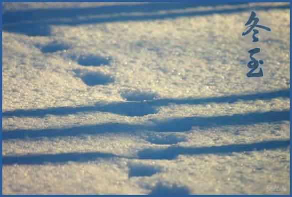 дунчжи_снег